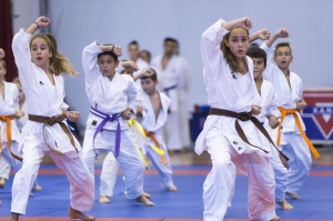 Inter Club Judo